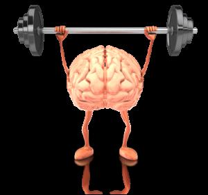 Entraînement du cerveau